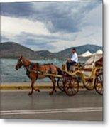 Brown Horse Drawn Carriage Metal Print