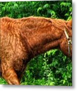 Brown Horse In High Definition Metal Print