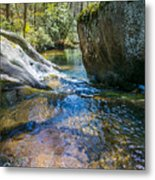 Brown Mountain Forest Metal Print