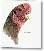 Bruno The Ko Shamo Rooster Metal Print
