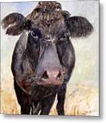 Brutus - Black Angus Cattle Metal Print