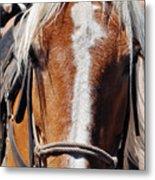 Bryce Canyon Horseback Ride Metal Print