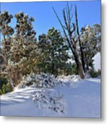Bryce Canyon Snowfall Metal Print