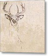 Buck Unfinished Art Metal Print