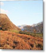 Buckbarrow Crag Metal Print