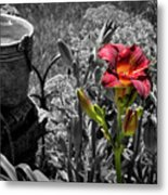 Buckets Of Water And A Splash Of Flower Metal Print