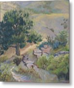 Buckhorn Canyon Metal Print