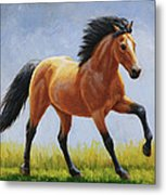 Buckskin Horse - Morning Run Metal Print