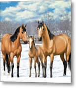 Buckskin Horses In Winter Pasture Metal Print by Crista Forest