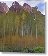 Buckskin Mtn And Friends Metal Print