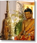 Buddha In India Metal Print