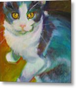 Buddy The Cat Metal Print