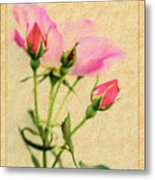 Buds And Bloom - Rose Floral Metal Print