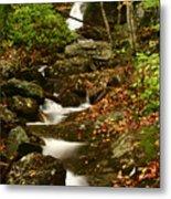 Buff Creek Falls Metal Print