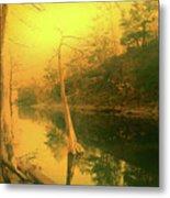 Buffalo River In Gold Metal Print