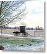 Buggy Alone In Winter Metal Print