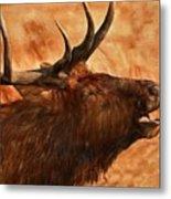 Bugling Bull Elk Autumn Background Metal Print