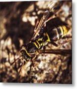 Bugs Life Metal Print