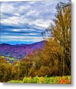 Bull Creek Valley Metal Print