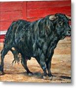 Bull Metal Print by David McEwen