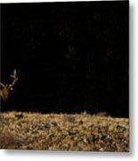 Bull Elk-signed-#0266 Metal Print
