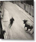 Bull Run 2 Metal Print