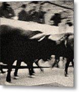 Bull Run 3 Metal Print