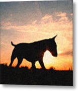 Bull Terrier At Sunset Metal Print