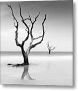 Boneyard Beach Xv Metal Print