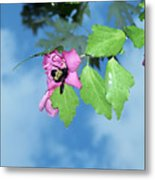 Bumble Bee 2 Metal Print
