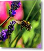 Bumble Bee In Flight Metal Print