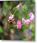 Bumble Bee1 Metal Print