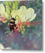 Bumblebee Before Dawn 2 Metal Print