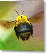 Bumblebees Flight Metal Print