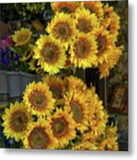 Bunches Of Sunflowers Metal Print