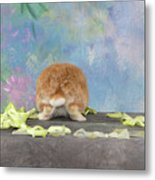 Bunny Butts Are Beautiful  Metal Print