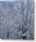 Burnidge Winter Metal Print