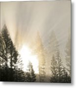 Burning Through The Fog Metal Print