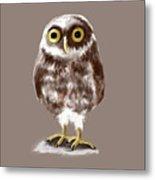 Burrowing Owl Metal Print