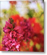 Bursts Of Color Metal Print