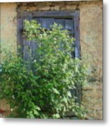 Bush And Window Metal Print
