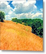 Bushes On A Hill Ae Metal Print