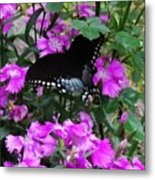 Butter Fly In The Goods Metal Print