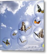 Butterflies And Bubbles Metal Print by Tony Cordoza