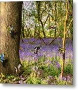 Butterflies In A Bluebell Woodland Metal Print