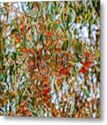 Butterflies In The Grove  Metal Print