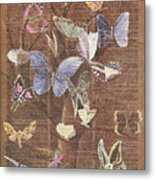 Butterflies On A Tree Metal Print