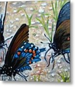 Butterflies Original Oil Painting Metal Print by Natalja Picugina
