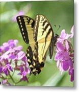 Butterfly #9 Metal Print