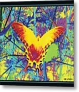 Butterfly All Aglow Metal Print